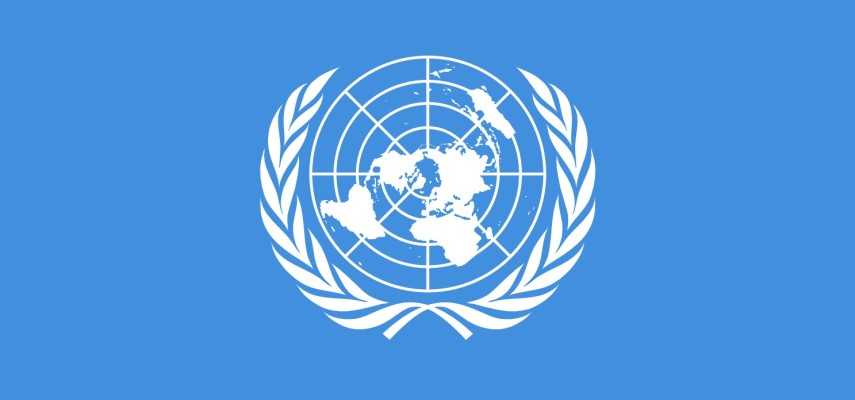 Мировые проблемы и международные организации